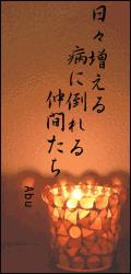 20060608_00
